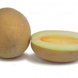 Пъпеш ананас OR- AN2 F1