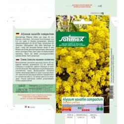 Алисиум  - Скален Златист ( Alyssum Colden Yellow)